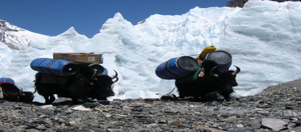 Expeditions in Tibet